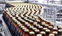 Glass bottles on conveyor belt at plant